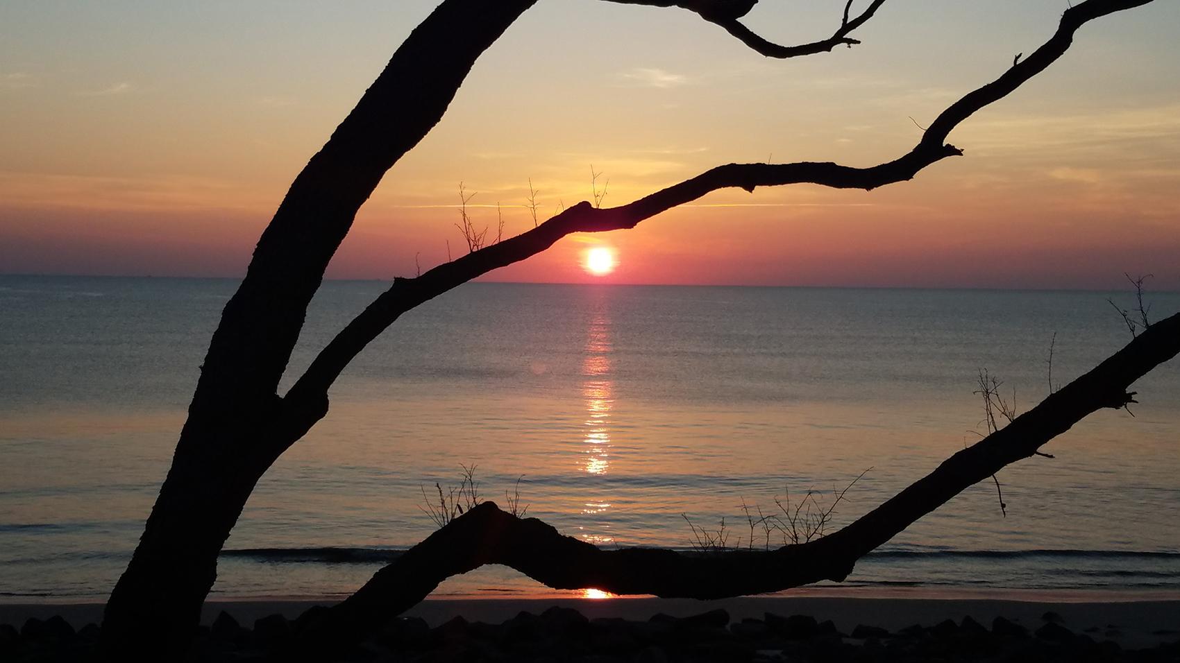 Jekyll Island- sunrise